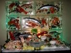 Seafood Wall 60x80 Custom