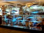 Salmon & Seafood Wall 7\'x14\' Custom