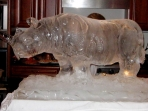 Rhino 30x40 $450.00